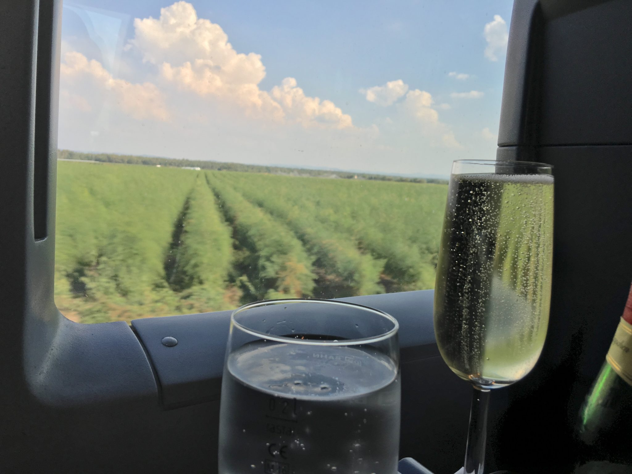 A glass of bubbles and a window seat on a sunny day- Ideal. Image: JOhn Walton